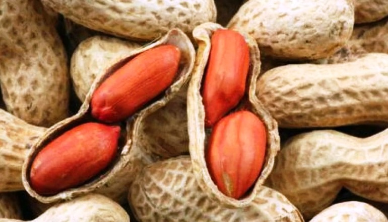 Арахис уменьшает риск сердечных заболеваний