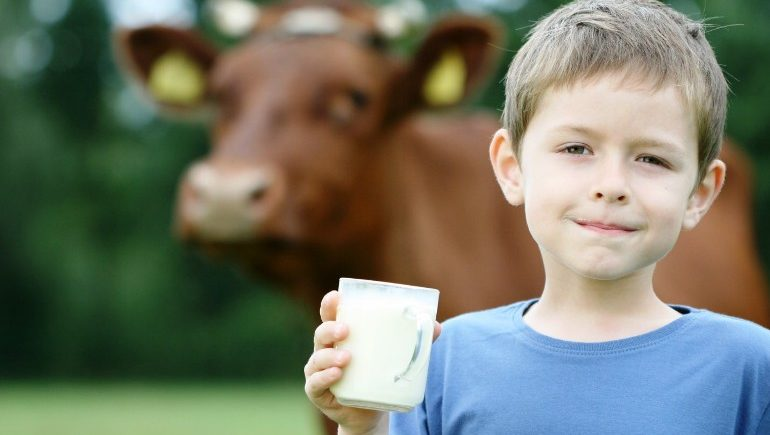 Пьющие коровье молоко дети растут быстрее