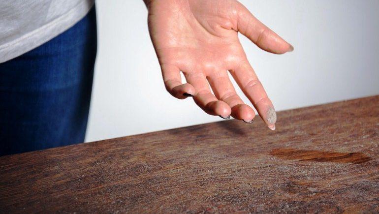 Рост жировых клеток стимулирует домашняя пыль