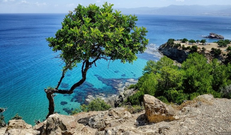 Акамас уникальный заповедник на острове Кипр
