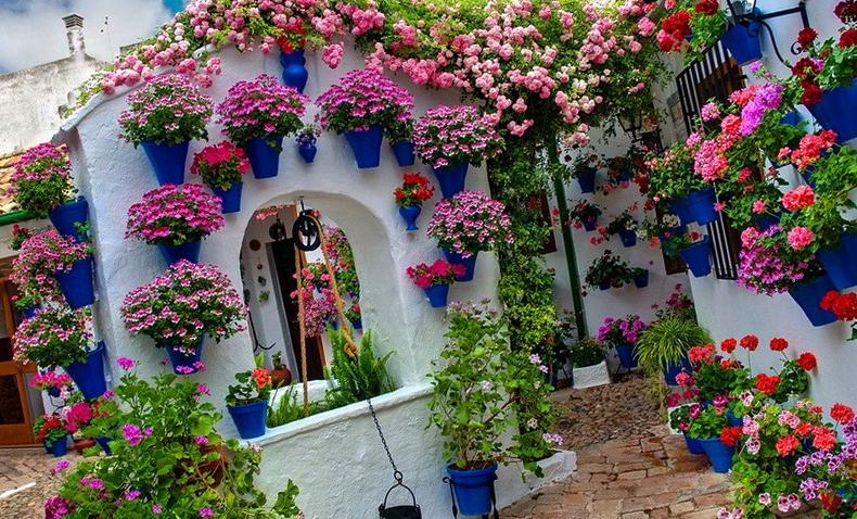 Праздник цветов Анфестирия на Кипре