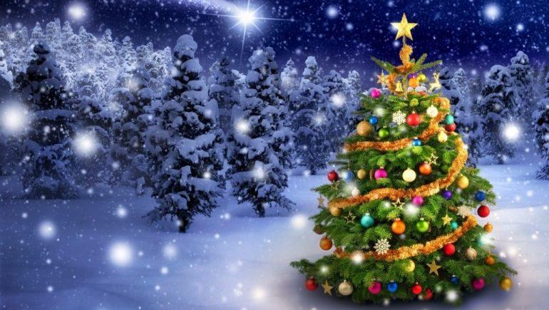 Новогодние елки оказались опасны для человека