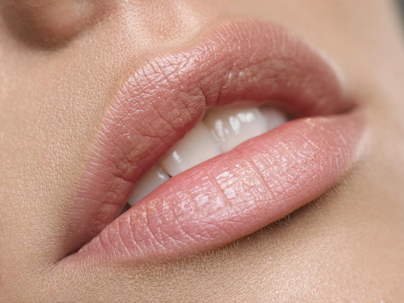 вернуться красивые женские губки фото зависимости вида