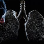 Два продукта, восстанавливающие лёгкие курильщиков