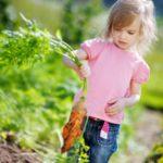 Стерильная чистота опасна для здоровья детей