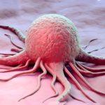 Ученые развенчали основные мифы о раке