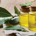 Натуральный мышечный релаксант - лавровое масло