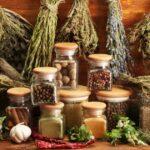 Полезные растения, которые должны быть в аптечке