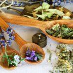 Лекарственные растения с мягким действием на организм